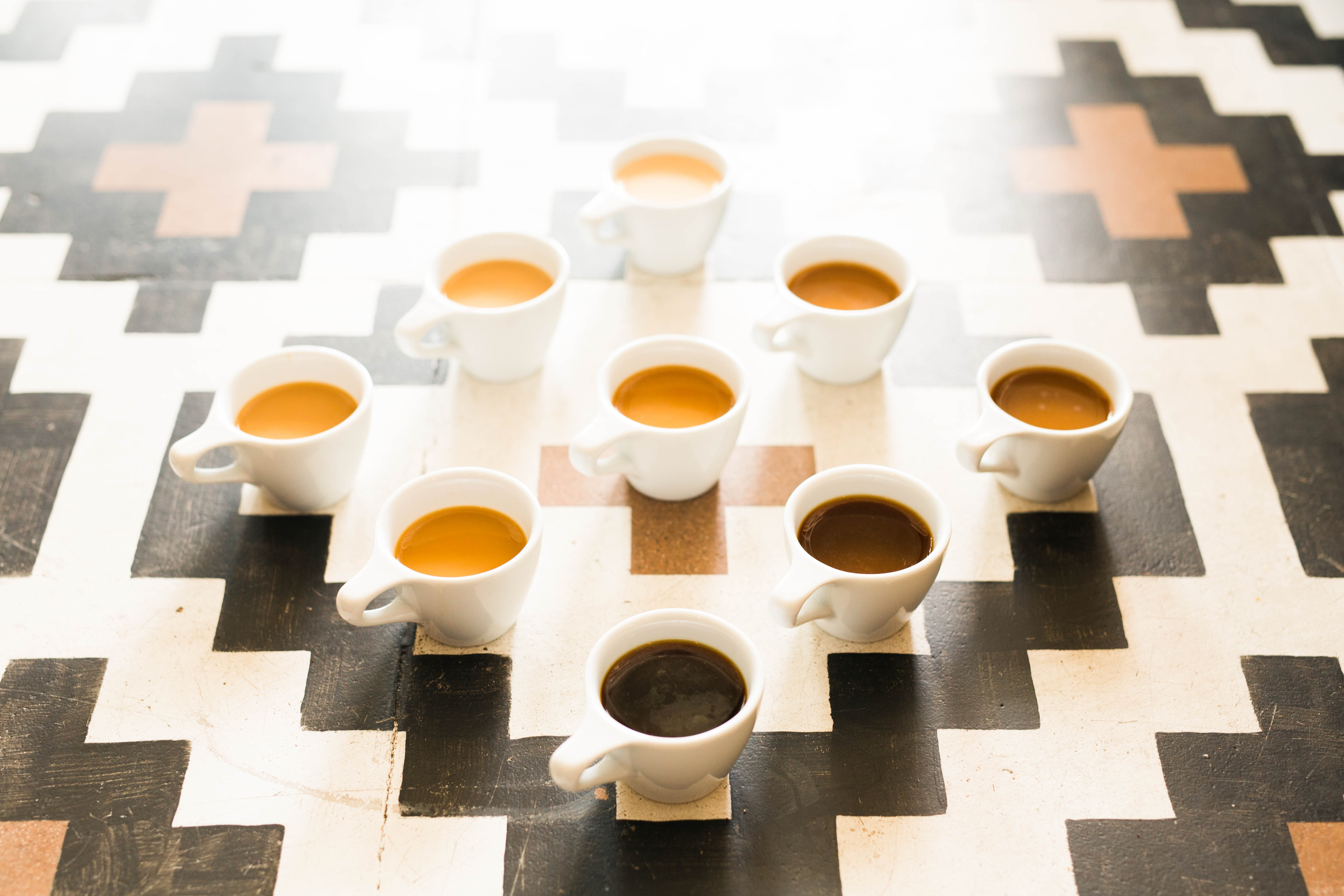 sensory test using different coffee to research